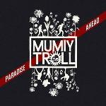 """Группа """"Мумий Тролль"""" выпускает новый альбом только в США"""