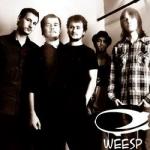 Новые видео от группы Weesp