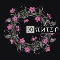 Ю-Питер «Цветы и Тернии»